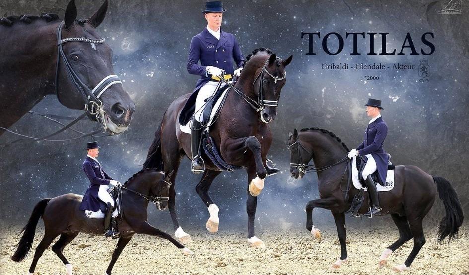 Totilas گران ترین اسب های دنیا